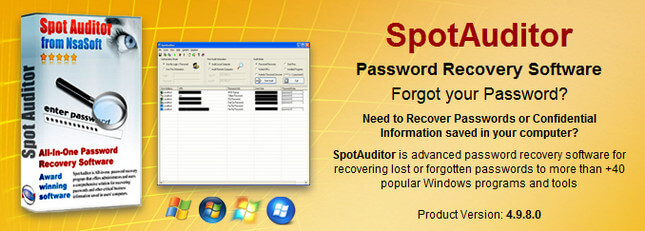 Nsasoft SpotAuditor Full