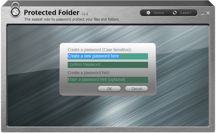 iObit Protected Folder klasor sifreleme full