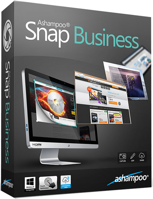 Ashampoo Snap Business Full indir