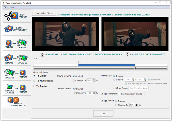 Video image Master Pro Full