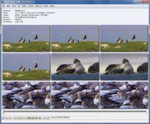 VirtualDub FilterMod Full